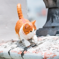 Mô Hình Hoàng Thượng Mèo - Cử Động Được (Vàng)